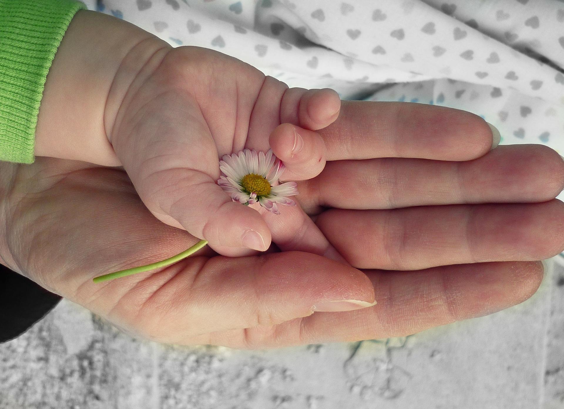 Cotización por cuidar a los hijos